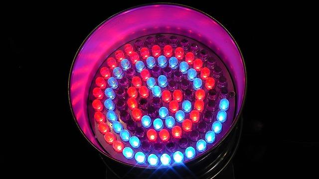 světlo diod